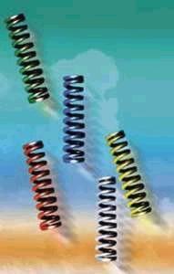 AIRWINGS Feder für Evolution und Tour, 80 mm,